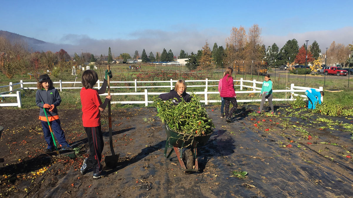 SOU-Farm Children for Educators